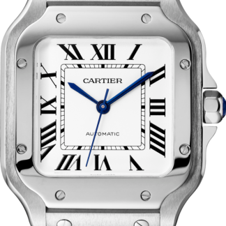 Cartier Santos De Cartier Medium Size 2018