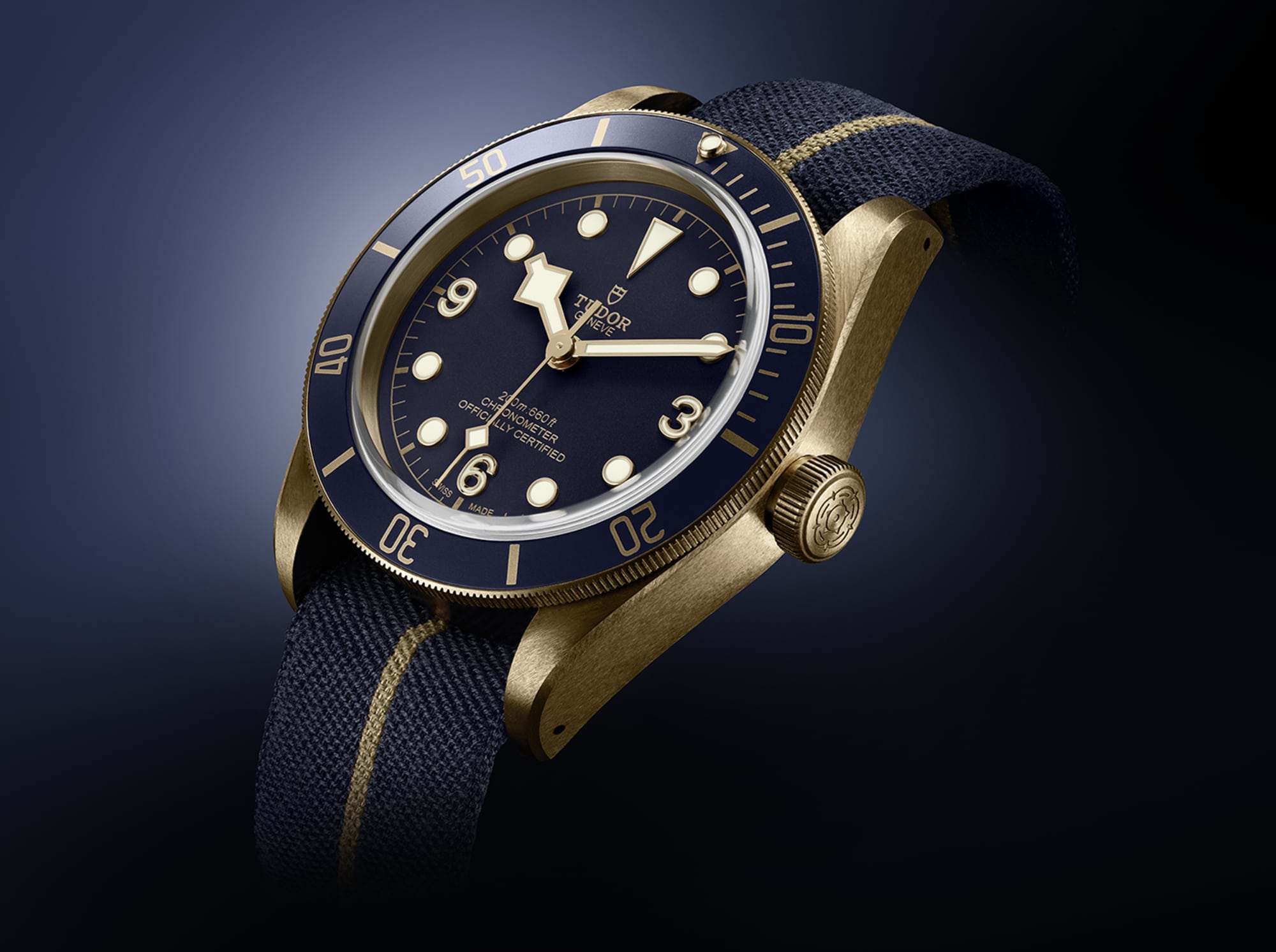 Tudor Black Bay 79250BB